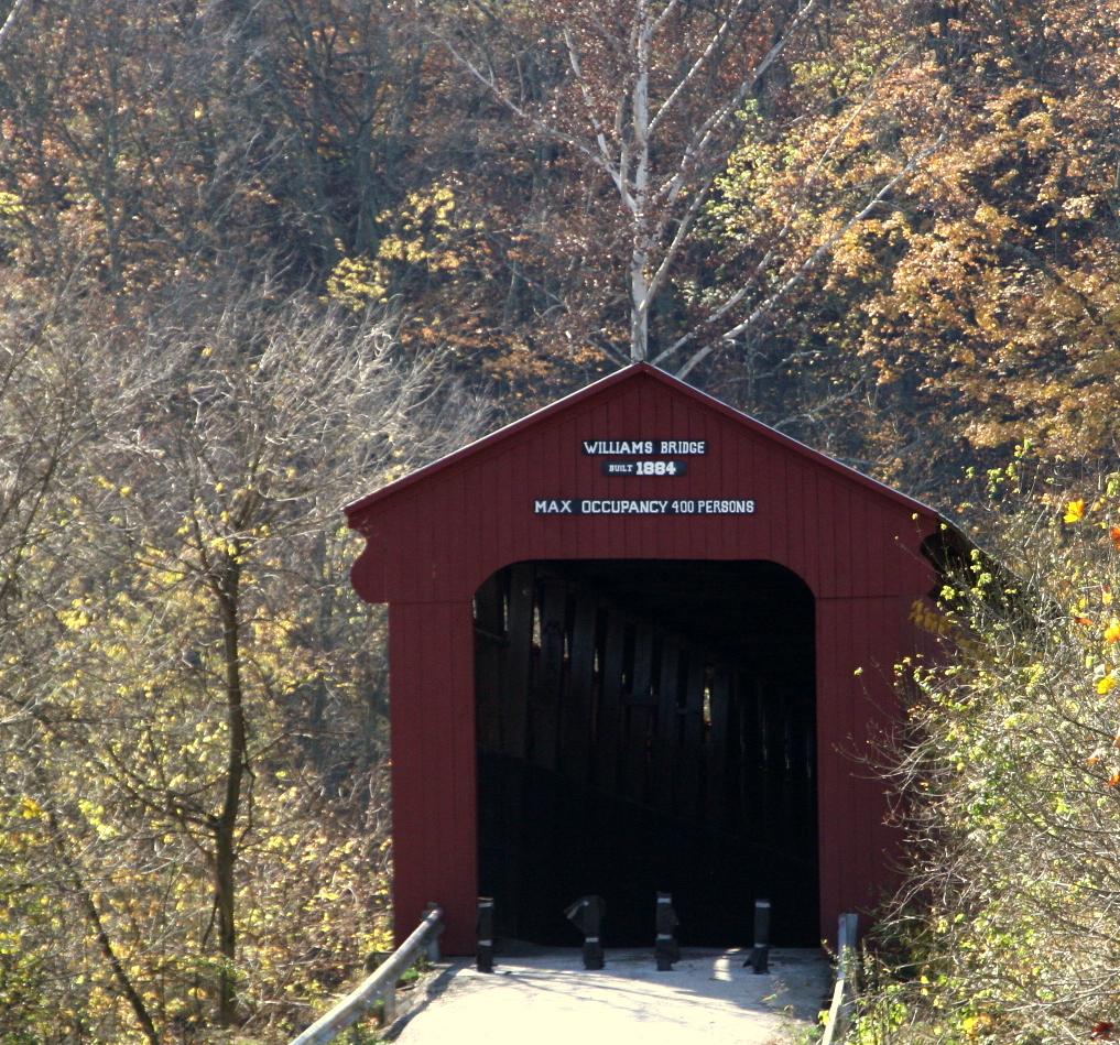 IMG_5579williams bridge