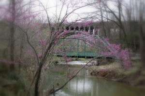 Danville Twin Bridge