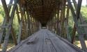 williams-bridge1-009