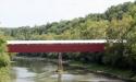 williams-bridge1-016